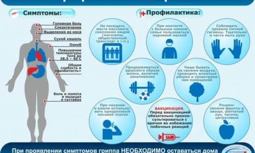 Profilaktika-grippa1-1024x724
