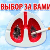 31-may2017_VD_beztabaka_2-290x290