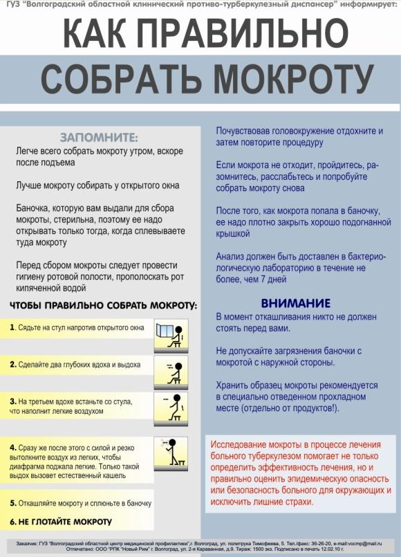 listovka_kak_pravilno_sobrat_mokrotu(2)